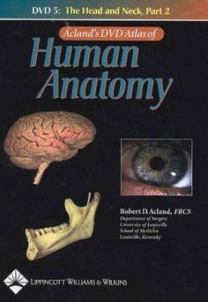 Aclands Dvd Atlas Of Human Anatomy The Head And Neck The
