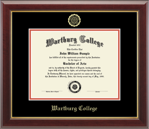 Gold Embossed Diploma Frame In Gallery With Black/Orange Mats